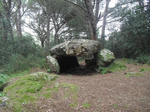 Dolmen milenario de Can Mina dels Torrents, cercano al núcleo de Llafranc