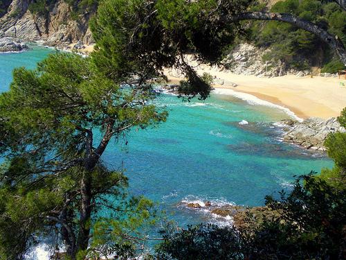 Las aguas de Cala Sa Boadella son limpias y transparentes