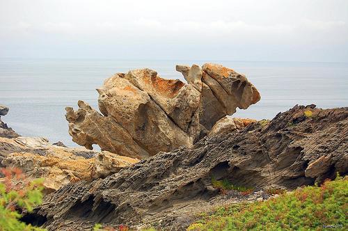 Otro bello ejemplo más del efecto que el viento y el agua han tenido sobre las rocas del Pla de Tudela