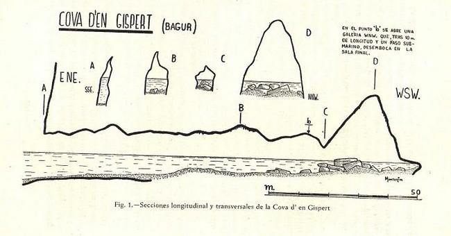 Plano del interior de la Cova d'en Gispert