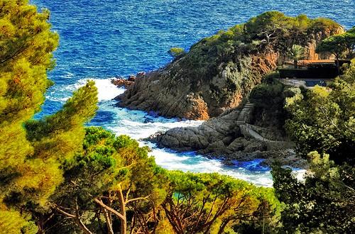 El entorno natural en que se sitúa Cala Treumal, en medio de un bosque de pinos, es extraordinario