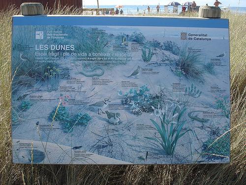 Panel indicativo que informa de la existencia de dunas protegidas en Playa de la Rubina, Empuriabrava