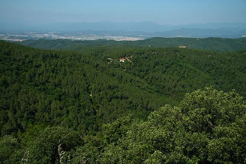 El marco natural en el que se encuentra el Santuario de los Ángeles es de una gran belleza, situado en pleno bosque y montaña