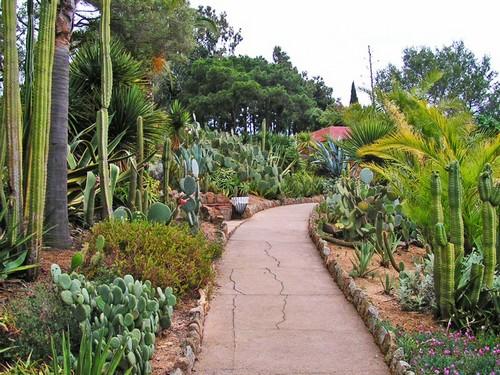El Jardín Botánico Pinya de Rosa está repleto de senderos por donde pasear y observar la belleza de sus especies vegetales