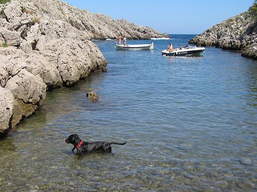 Cala Pedrosa, en l'Estartit, es una cala tranquila que también utilizan algunas embarcaciones de recreo para fondear