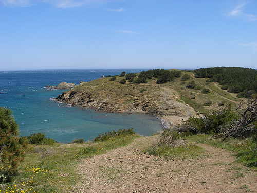 Playa del Borró
