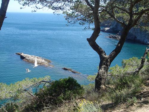 El camino de ronda que conduce a la Cala Pedrosa desde el Faro de San Sebastián ofrece magníficas vistas sobre esta parte de la costa del Mediterráneo