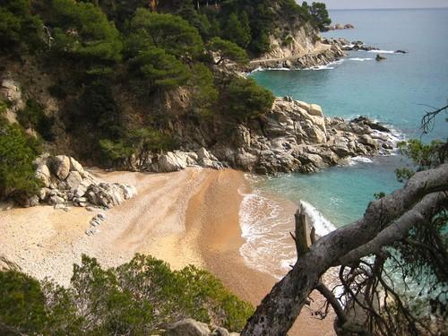 Cala Figuera se encuentra en un entorno natural muy rico, rodeada de otras playas y calas