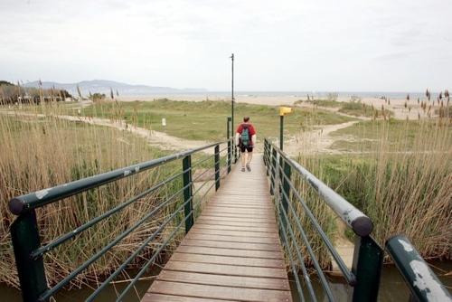 Camino hacia la playa en un entorno dunar. Desembocadura del río Fluvià, en Sant Pere Pescador, Girona, Costa Brava
