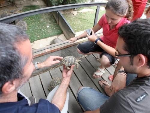 Salida en familia al Centro de Reproducción de Tortugas de la Albera, en Garriguella, Girona, Costa Brava