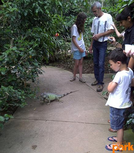 Los niños son los primeros sorprendidos de ver a animalitos de los que a menudo sólo tienen conocimiento por los libros o la TV
