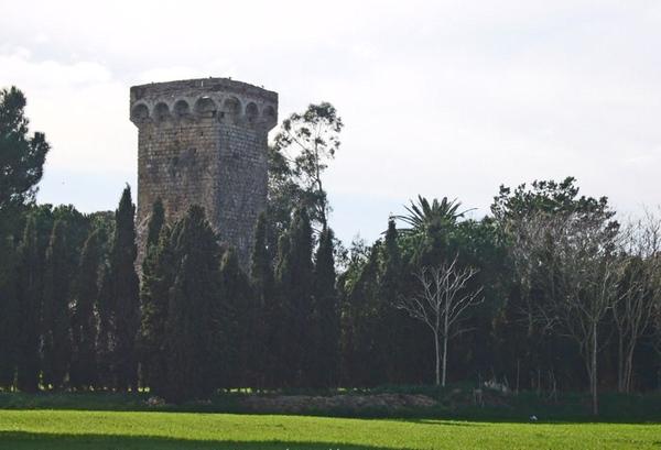 Torre Simona