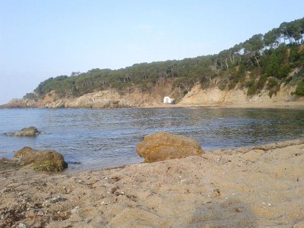 Los pequeños restos naturales sobre la playa d'en Remendon no son que la prueba de su carácter virgen