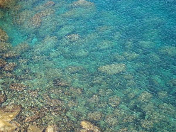 Las aguas de Cala Ses Vaques son muy limpias y su fondo está compuesto de rocas aplanadas