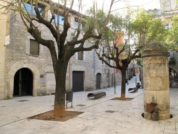 El Museo Arqueológico de Banyoles se encuentra en un bello palacio gótico del s. XV, en el centro de la localidad