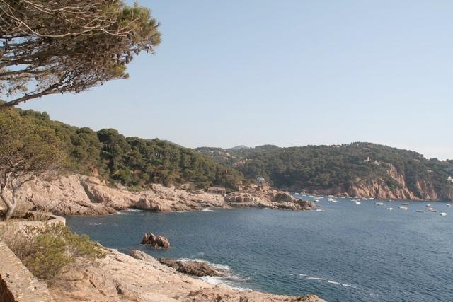 El paisaje que encontramos durante el camino de ronda hacia Cala Gamarús, perteneciente a Calella de Palafrugell, es el de una costa con calas de roca, sin arena