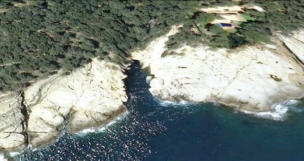Vista aéria de la Cala Gamarús, que forma una clara bahía en la linea de costa entre Tamariu y el Cabo de Sant Sebastià