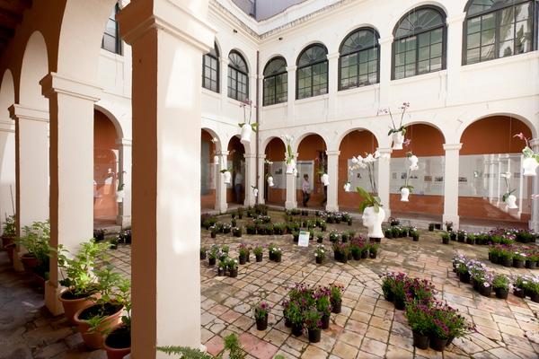 En el interior del Museo de Historia de la Ciudad de Girona se puede apreciar el antiguo claustro del Convento de Capuchinos que existía aquí