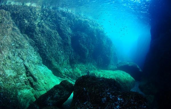 Si tenéis a mano un tubo y unas gafas submarinas no perdáis la oportunidad de echar un vistazo al fondo submarino de la Banyera de Ses Dones, en Tossa de Mar. Es precioso.