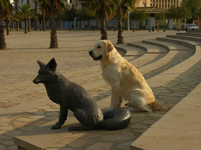 Sobre el mismo paseo marítimo de la Playa de Riells encontramos también la estatua de otro personaje de la novela del Principito: el zorro