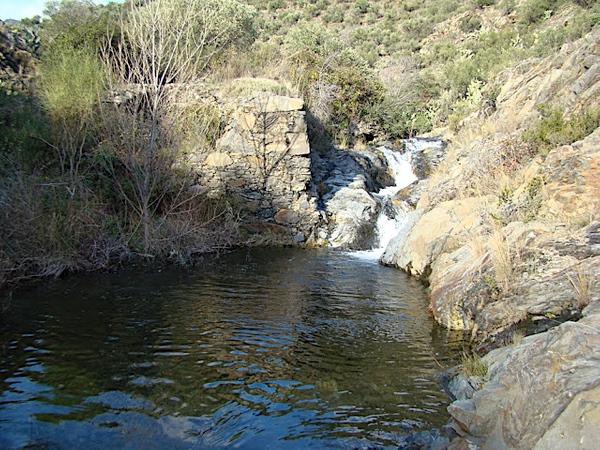 Bassa del Molí es una especie de piscina mineral natural procedente de las Montañas Alberas que se forma en el curso de riachuelo de Molinàs, tras una época de lluvias