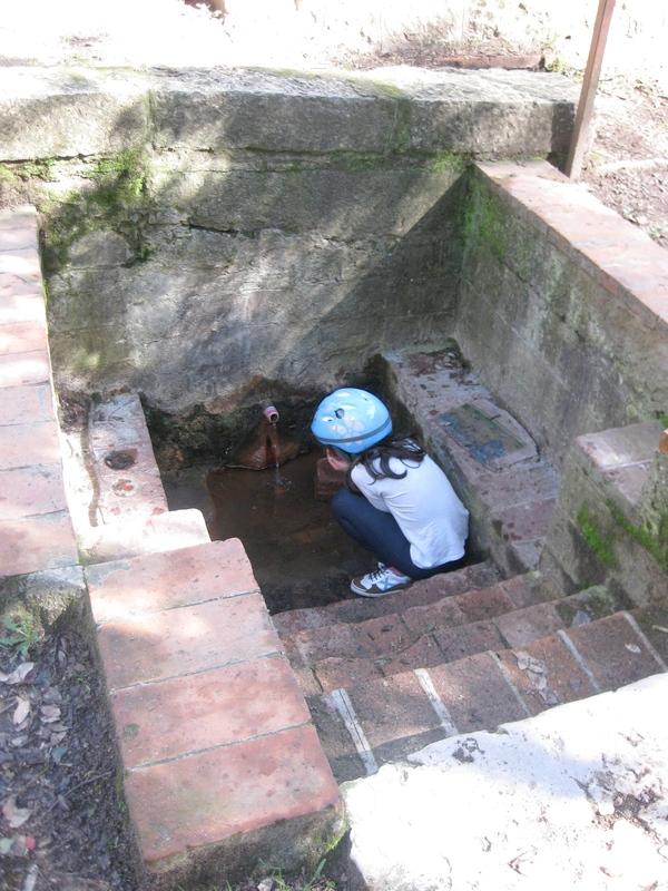 Tanto la fuente Font Picant, de agua ferruginosa, como la de Fuente de Ribes, mineral neutra, son riquísimas. Se aconseja traer bidones, o incluso garrafas, para llenarlas cómodamente.
