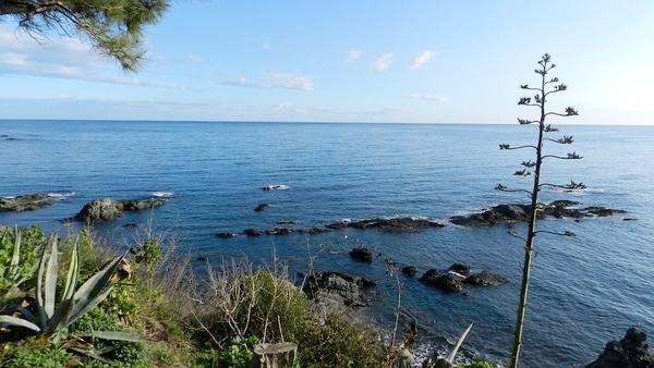 Como ya introducíamos anteriomente, las Islas del Falcón se encuentran a pocos metros al norte de la bahía del Cau del Llop, en Llançà