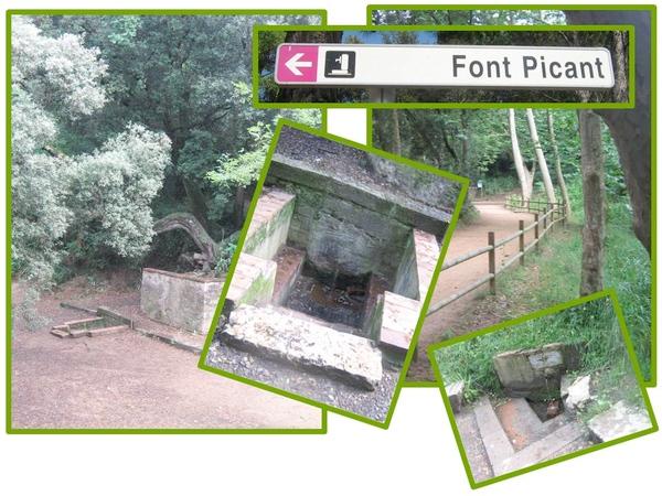El paraje donde se encuentra Font Picant se encuentra bien señalizado en la carretera GIV-6613 que se cruza con la Ruta del Carrilet a la altura de la mencionada estación de Bell-lloc Font Picant, en Santa Cristina d'Aro
