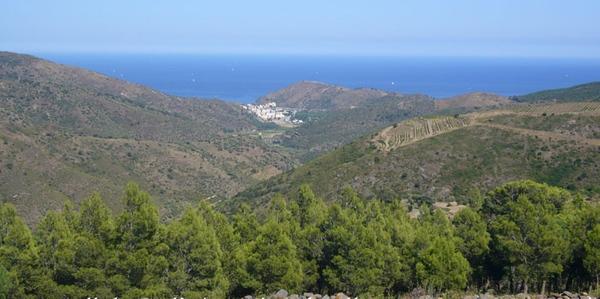Desde el Castillo de Molinàs las vistas del mar y del pueblo de Colera son excelentes