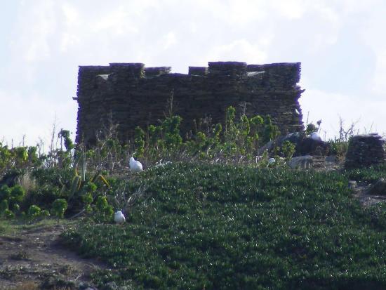 Paseando por el perímetro de la Isla S'Arenella de Cadaqués nos encontramos con la Barraca d'en Llimó, una construcción de 1919