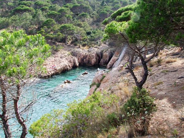 Llegamos a Cala Ametller, que forma una pequeña bahía en la costa rocosa existente entre las grandes playas de Sant Feliu de Guíxols y Sant Pol