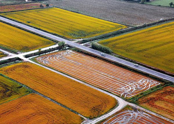 Vista aérea de los campos de Pals, Costa Brava, una zona parcialmente inundada en la que, durante siglos, se ha plantado el arroz, aquí, a pocos centenares de metros de la playa