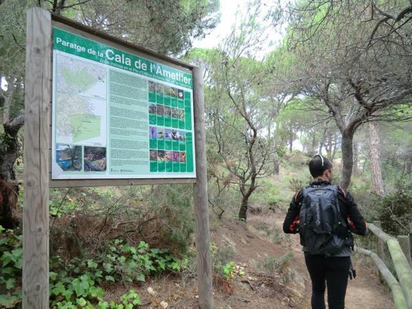 Cala Ametller se encuentra junto a un paraje natural de gran belleza: la Volta de l'Ametller, un bosque de pinos junto al mar frecuentado por los excursionistas