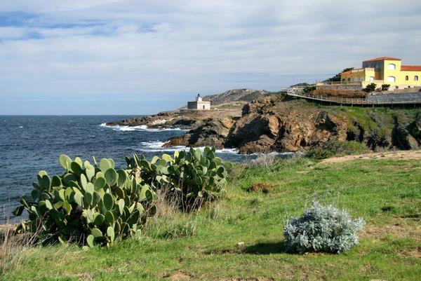 Paseando sobre el mismo camino de ronda, desde Llançà, que nos lleva hasta Playa d'en Robert, podemos divisar unos pocos centenares de metros más allá el Faro de S'Arenella, también en el Port de la Selva. Un excelente mirador.