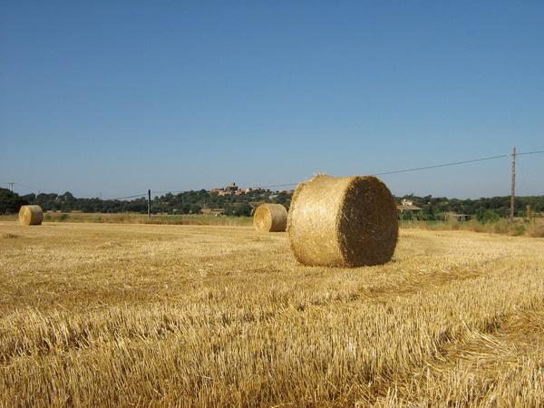 Estamos en la planicie del interior del Ampurdán, en ese medio rural y agrícola que a menudo nos recuerda los bellos paisajes de la Toscana