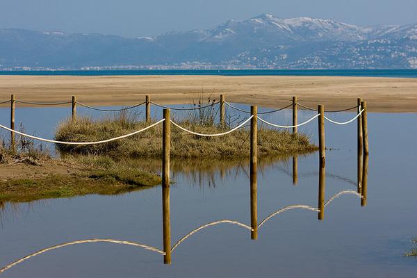 Las desembocaduras de los ríos Vell y Fluvià forman pequeñas zonas lacunares junto a las dunas perfectas para el desarrollo de especies vegetales adaptadas a este entorno arenoso y de fuerte viento de tramuntana