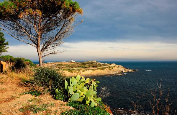 Por otra parte el camino de ronda que desde el Faro de S'Arenella llega hasta Cala Colomera es también muy interesante desde el punto de vista paisajístico. Un paseo por aquí al atardecer es una experiencia muy romántica.