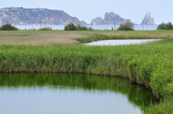 Estamos en l'Estartit, frente a una zona lagunar de agua dulce muy tranquila justo delante de las Islas Medas, tal y como pueden verse al fondo de la imagen