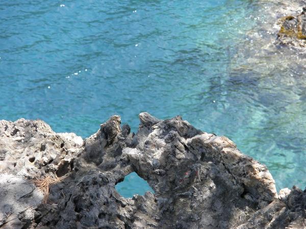 Desde las rocas que rodean a la Cala Galera, en el Port de la Selva, podemos ver las aguas cristalinas que rodean a este precioso enclave natural virgen en pleno Cabo de Creus, Costa Brava
