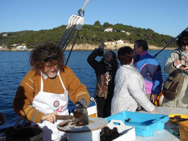 Durante los fines de semana en que transcurren las Jornadas Gastronómicas de la Garoinada se programan excursiones en barco frente a la preciosa costa de Calella de Palafrugell, y se ofrece un aperitivo de garoinas a los visitantes