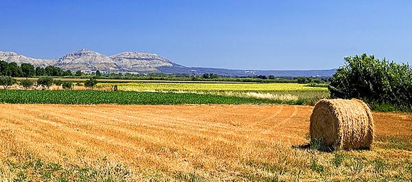 ¿Estamos en la Toscana? No, es el paisaje desde Palau-Sator, y las montañas que vemos al fondo son las del Montgrí, en Torroella