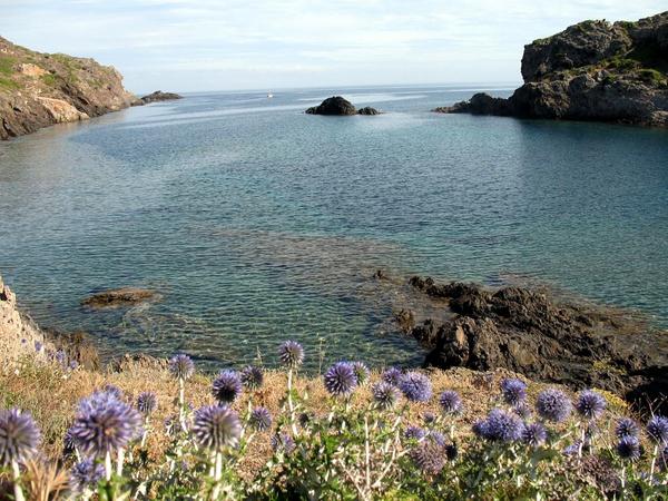 Cala Sant Lluís, a 1,5 km al norte de Cadaqués, se encuentra en un precioso paraje natural rodeado de vegetación