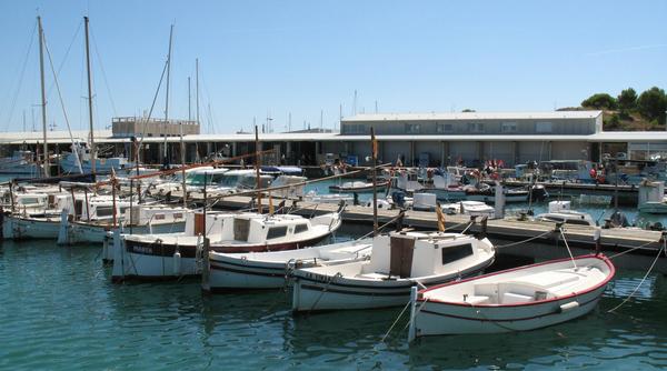 La visita al MARAM nos ofrece además la oportunidad de contemplar las modernas instalaciones del Puerto de l'Escala, ya que se encuentra en su interior. Por la zona se pueden ver las embarcaciones, la mayoría de recreo.