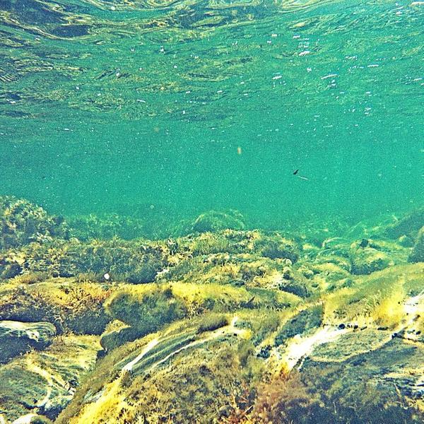 El fondo marino de la Playa Es Sortell es precioso, claro y de aguas transparentes, de hecho como en todo el Cabo de Creus