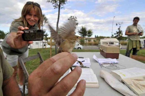 Un miembro del grupo de naturaleza encargado del parque fotografía a una pequeña ave del Parque dels Estanys, en Platja d'Aro, Girona, Costa Brava