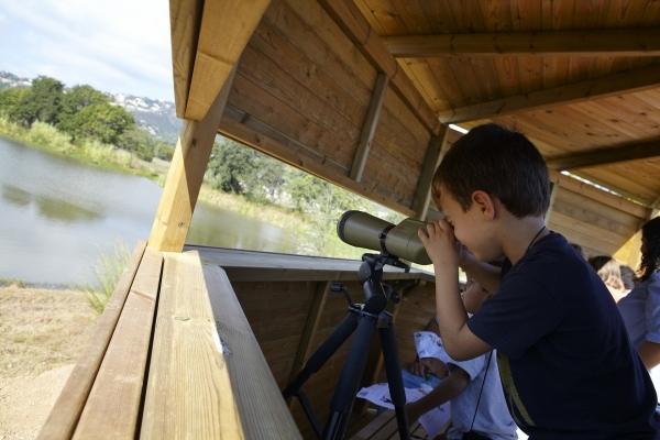 Son varias las casetas de madera que permiten una correcta observación de las aves, que no son molestadas o intimidadas por la presencia humana. A los niños les encanta este tipo de observación y más si le echan el ojo a unos prismáticos.