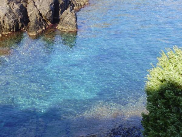 Las aguas cristalinas, transparentes, de Cala Cativa, en el Port de la Selva, esconden a pocos metros los restos de una antigua embarcación que naufragó aquí hace más de veinte siglos.