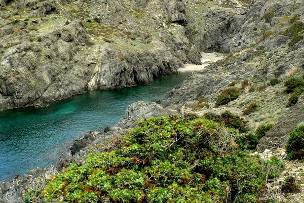 Cala Torta se encuentra a poco más de 2 kms. del centro de El Port de la Selva, y es un ejemplo típico en el Cabo de Creus, Costa Brava, de cala con un fuerte componente de naturaleza mineral