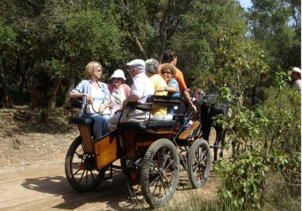 Un grupo de visitantes se dirige animadamente en carro a uno de los alcornocales del bosque de las Gavarras donde tendrá lugar la Pela del Corcho de Llofriu, en Palafrugell, Girona, Costa Brava, cada sábado anterior a la festividad de San Juan