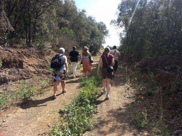 Durante nuestro itinerario por el Valle de Llémena subimos por el antiguo volcán Puig d'Adri